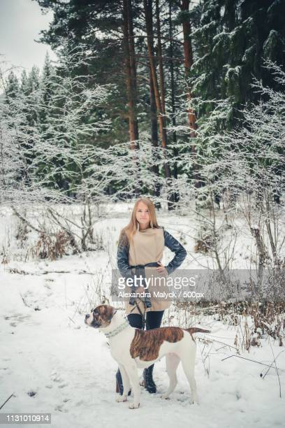 girl with dog on background of a winter fores - forens stock pictures, royalty-free photos & images
