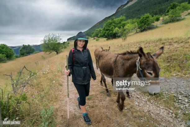 mädchen mit esel im italienischen berge - esel stock-fotos und bilder