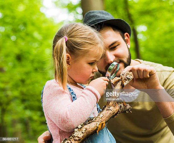 Girl with father in forest examining branch with magnifier