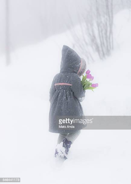 Girl with flowers walking in a blizzard