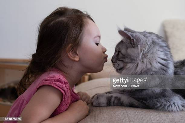 Girl with her cat (maine coon tabby cat)