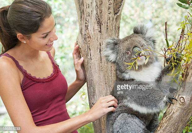 girl with koala in wildlife (xxxl) - koala stock photos and pictures