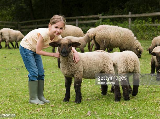 A girl with lambs