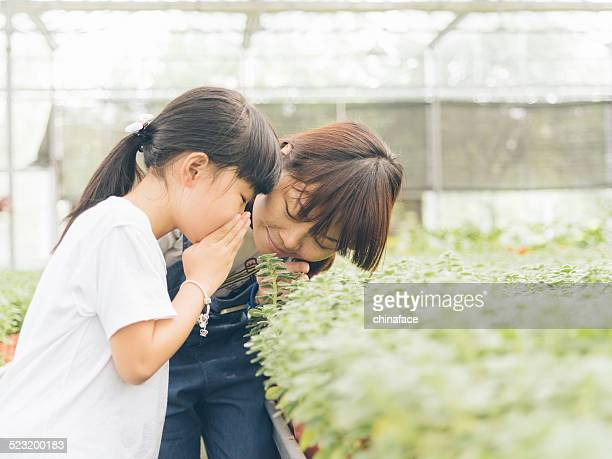 Girl (6-10) with mother looking at plants at nursery