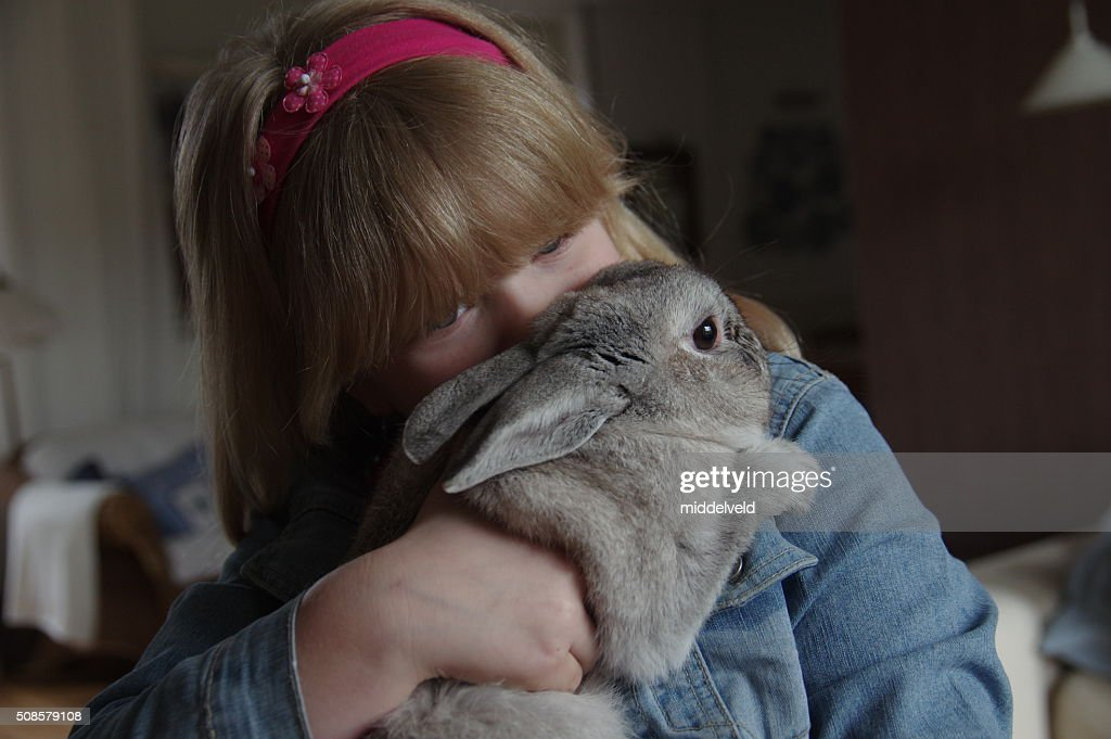 Girl with rabbit in here arms : Stock Photo