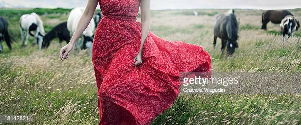girl with red dress on a field - girl blowing horse stock pictures, royalty-free photos & images