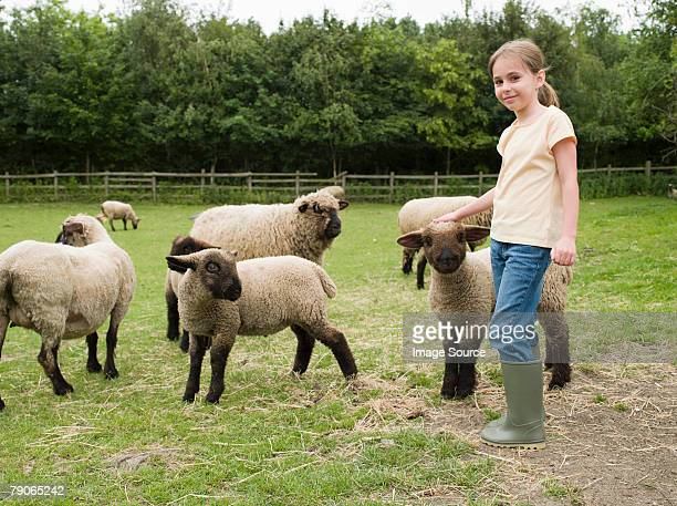 A girl with sheep