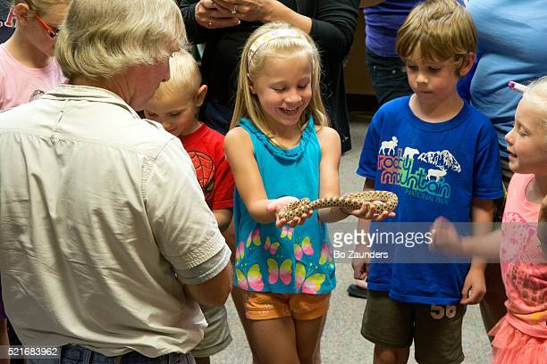 girl with snake - hognose snake stock pictures, royalty-free photos & images
