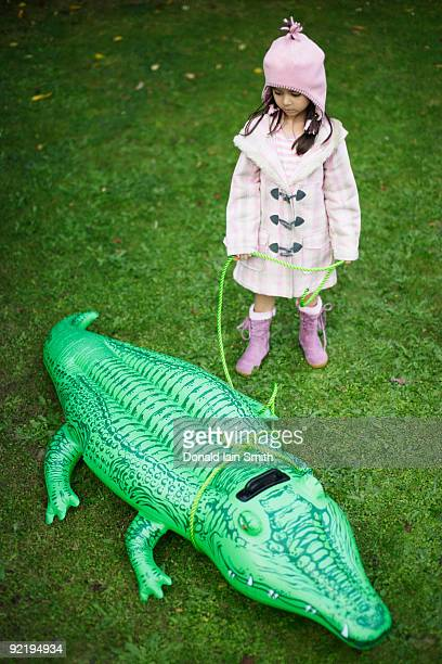 girl with toy alligator on leash - toy animal stock photos and pictures