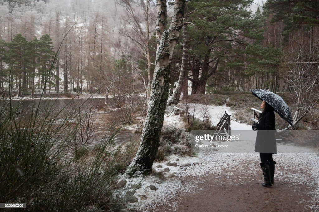 Girl with umbrella standing near bridge covered in snow in forest : Stock Photo