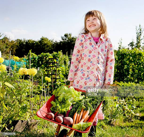 girl with wheelbarrow and vegetables, portrait - cultivated stock pictures, royalty-free photos & images