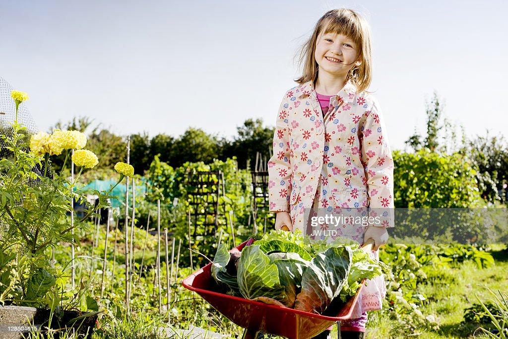 Girl with wheelbarrow and vegetables, portrait : Stock Photo