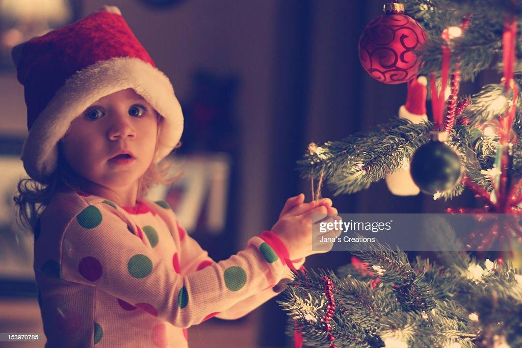 Girl with x-mas tree : Foto de stock
