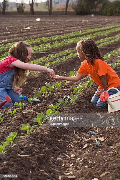 Girl working in a field