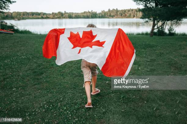 girl wrapped in large canadian flag by muskoka lake in nature. canada day celebration outdoors. - canada day stock pictures, royalty-free photos & images