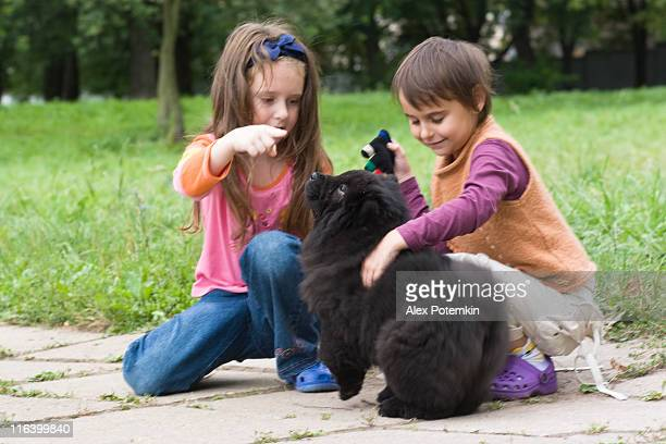 girls and black dog - chow dog stock pictures, royalty-free photos & images