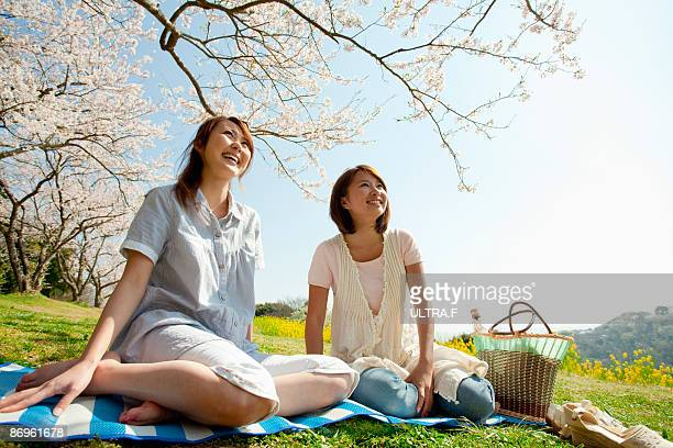 Girls are sitting under the cherry blossoms.