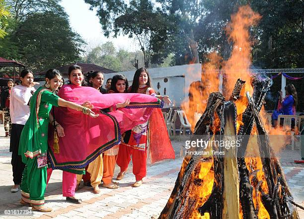 Girls celebrating Lohri at MCM College, Sector 36 on January 13, 2017 in Chandigarh, India. It is one of the most popularly celebrated festivals in...