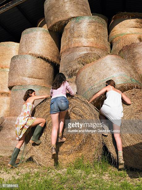 Girls climbing onto bale of hay