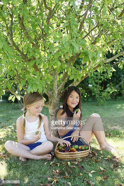 2 girls eating plums under a tree