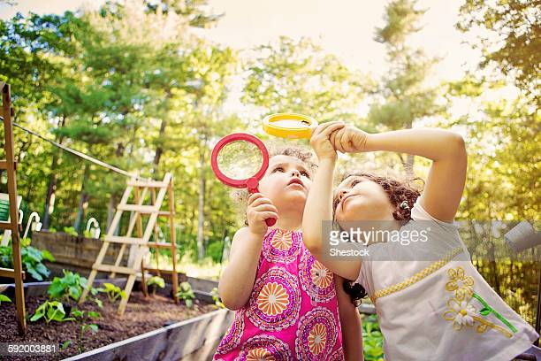 girls examining caterpillar with magnifying glass - insect stock pictures, royalty-free photos & images