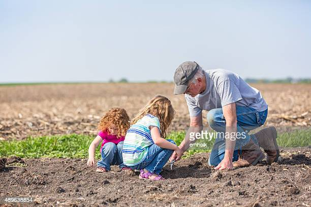girls & grandpa checking field for growing soybeans - minnesota bildbanksfoton och bilder