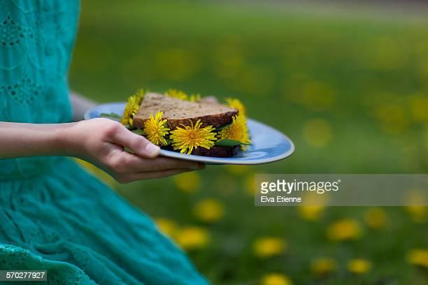 girl's hands holding dandelion sandwich on a plate - feuille de pissenlit photos et images de collection