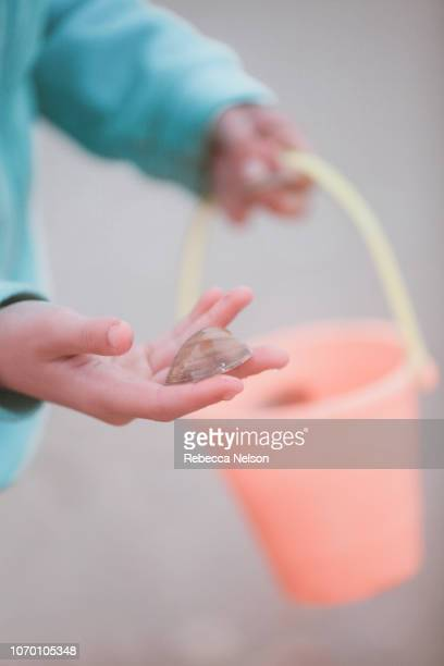 Girl's hands holding seashell and bucket on the beach