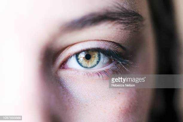 girl's hazel eye - thick girls stock photos and pictures