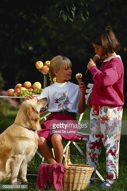 girls (6-7) in garden eating ice cream - dog eats out girl stock pictures, royalty-free photos & images