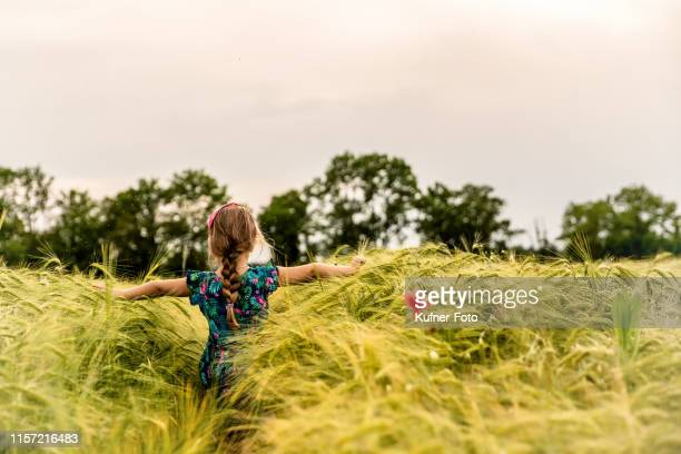 girls in the cereal field - kleid stock pictures, royalty-free photos & images