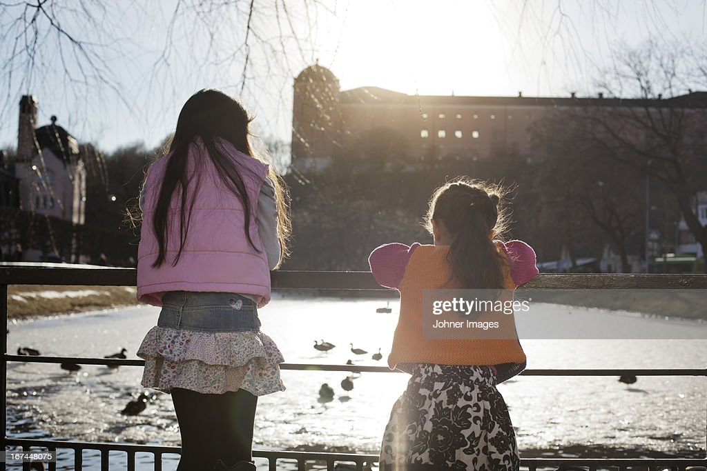 Girls looking at ducks in park : Stock Photo