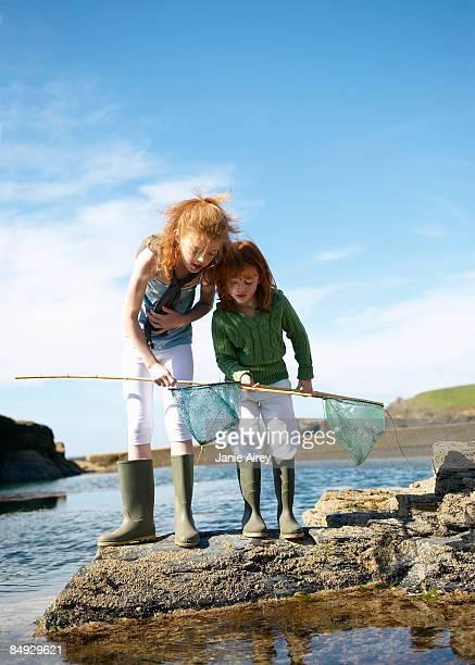 2 girls looking in nets at rock pool - tidvattensbassäng bildbanksfoton och bilder