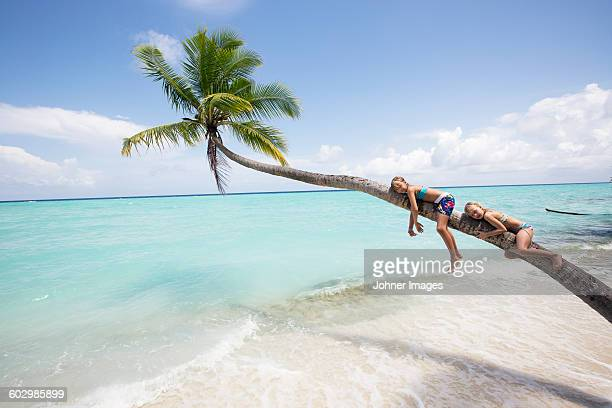 Girls on palm tree