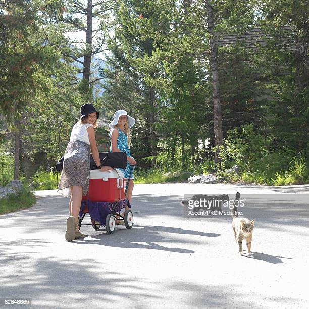 girls pulling wagon with supplies, alongside cats
