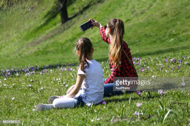 Girls take a photos in a field of crocus flowers blooming in the springtime by the Wawel Castel in Krakow Poland on 1 April 2017
