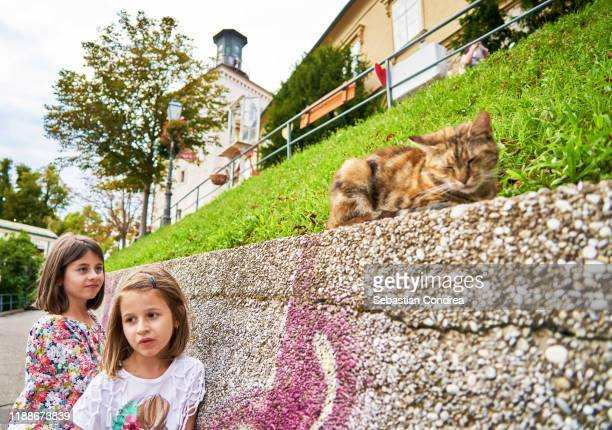 girls trying to wake the cat at lotrščak tower, gornji grad–medveščak is one of the districts, zagreb, croatia country discovery travel found - soltanto un animale foto e immagini stock
