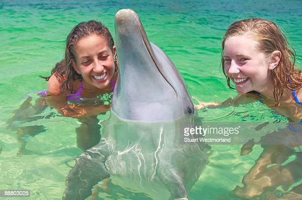 girls with dolphin - one animal stock pictures, royalty-free photos & images