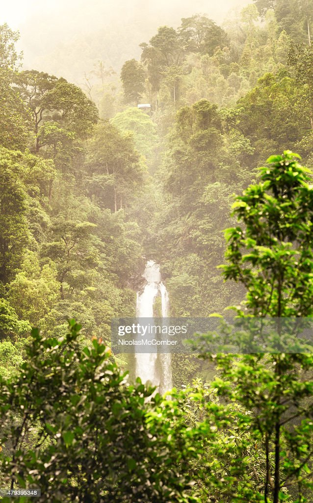 Gitgit Waterfalls North Bali Emerging From Lush Jungle Stock