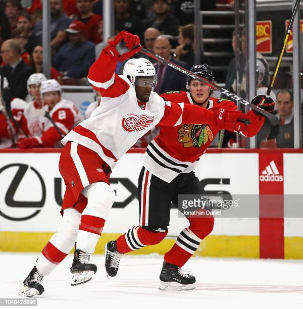 Givani Smith of the Detroit Red Wings is pressured by Adam Boqvist of the Chicago Blackhawks during a preseason game at the United Center on...