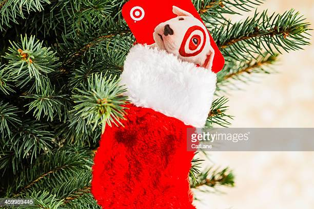 give the gift of target - celebrity stockings stock pictures, royalty-free photos & images