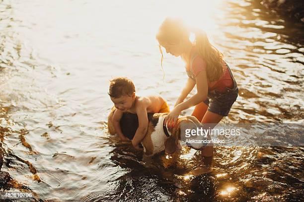 Für unseren Hund ein Bad in den Fluss