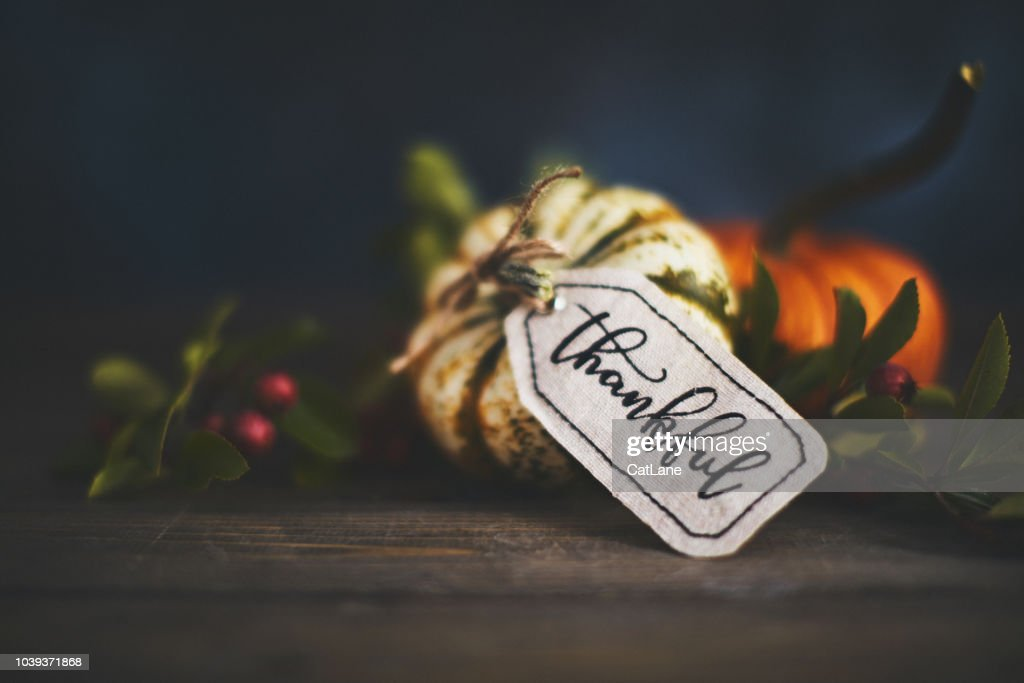Giving thanks with pumpkin assortment still life and thankful message : Stock Photo