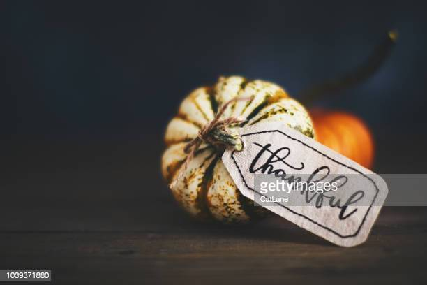 giving thanks with pumpkin assortment still life and thankful message - happy thanksgiving card stock pictures, royalty-free photos & images