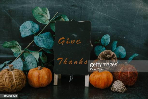giving thanks with pumpkin assortment still life and thankful message - happy thanksgiving text stock pictures, royalty-free photos & images