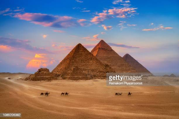 giza egypt pyramids in sunset scene, wonders of the world. - pyramid stock pictures, royalty-free photos & images