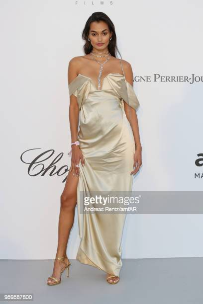Gizele Oliveira arrives at the amfAR Gala Cannes 2018 at Hotel du CapEdenRoc on May 17 2018 in Cap d'Antibes France