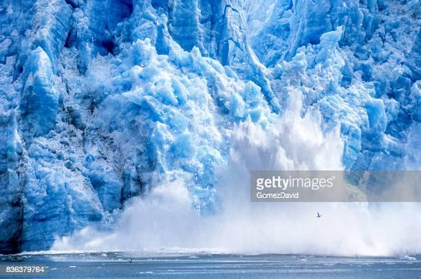 glacier calving into alaskan bay - glacier stock pictures, royalty-free photos & images