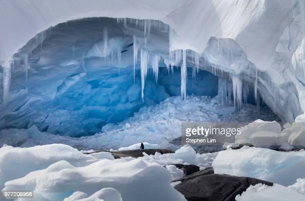 glacier cave, cierva cove, graham land, antarctica - icicle stock pictures, royalty-free photos & images