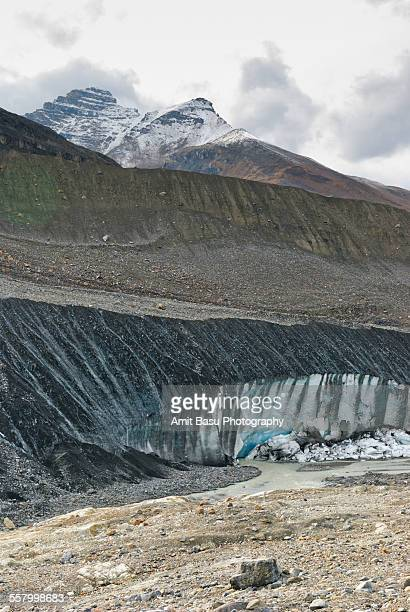 glacier edge at columbia icefield, canada - amit basu stock pictures, royalty-free photos & images